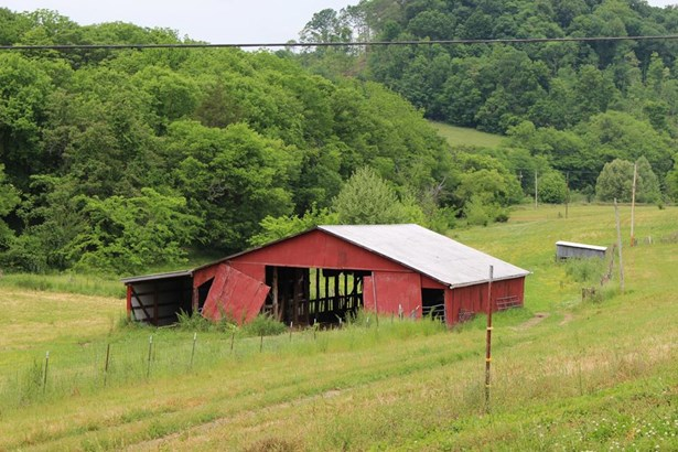 341 Puncheon Camp Rd, Bell Buckle, TN - USA (photo 3)