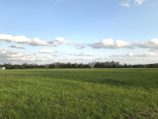 8033 Pleasant View Dr, Lascassas, TN - USA (photo 5)
