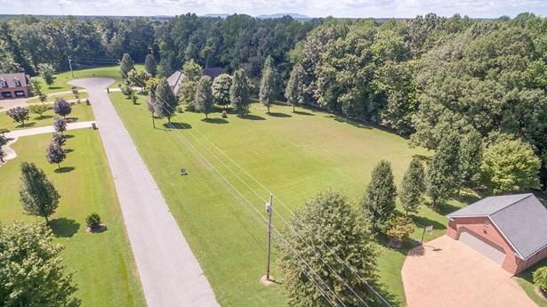 30 Briarwood Ln Lots 30 & 31, Smithville, TN - USA (photo 2)