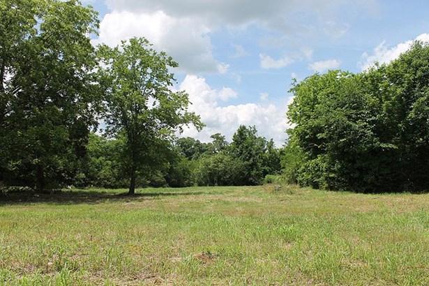 459 Earl Smith Rd, Shelbyville, TN - USA (photo 1)
