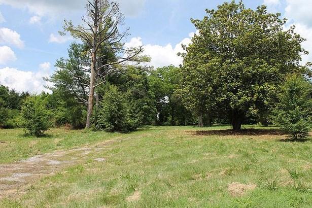 459 Earl Smith Rd, Shelbyville, TN - USA (photo 3)