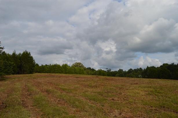 2380 Fairfield Pike, Shelbyville, TN - USA (photo 1)