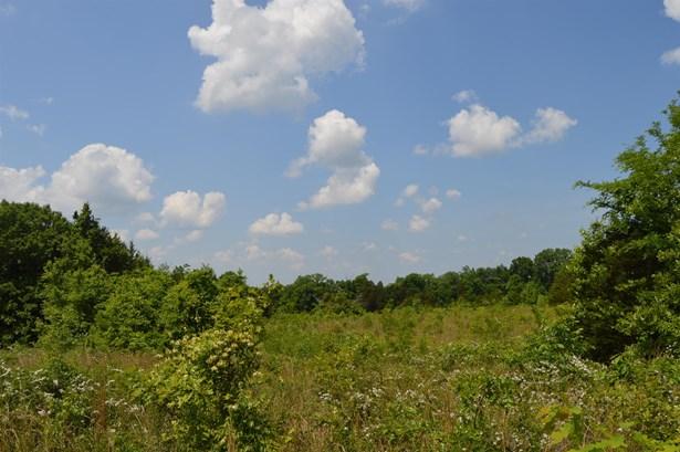 2380 Fairfield Pike, Shelbyville, TN - USA (photo 4)
