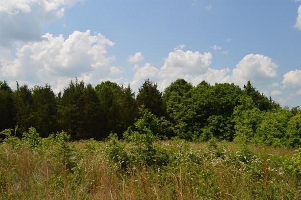 2380 Fairfield Pike, Shelbyville, TN - USA (photo 5)