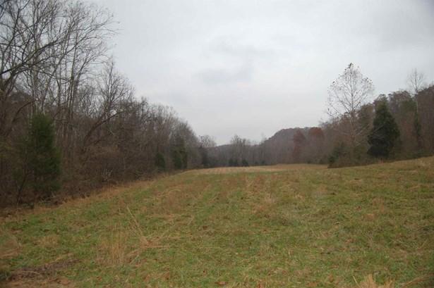 0 Smiley Hollow Rd, Goodlettsville, TN - USA (photo 2)