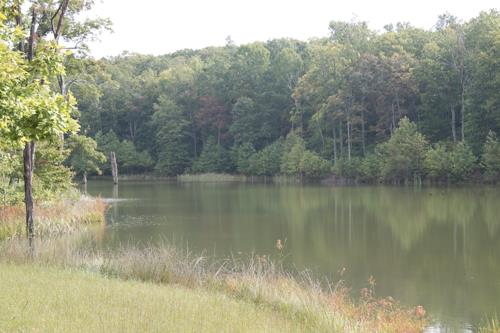 0 Valley View Dr, Altamont, TN - USA (photo 3)