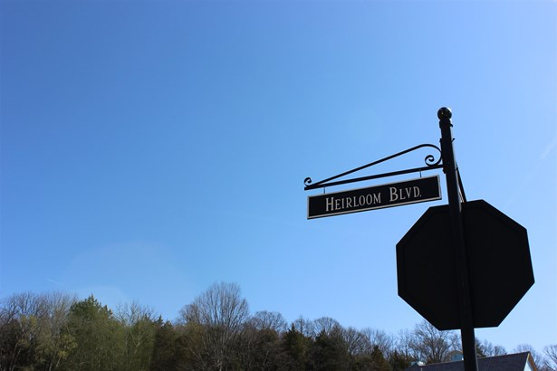 8468 Heirloom Blvd, College Grove, TN - USA (photo 2)