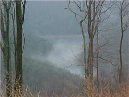 30 Hunters Landing, Smithville, TN - USA (photo 2)
