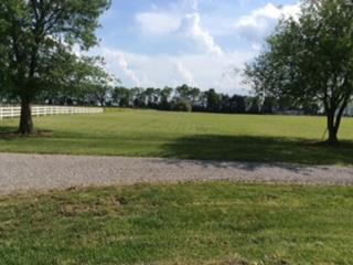 169 Eady Rd, Shelbyville, TN - USA (photo 3)