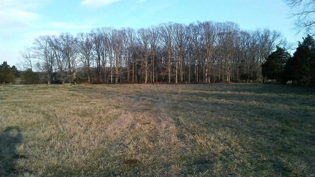 0 New Home Rd, Smithville, TN - USA (photo 3)