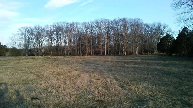 0 New Home Rd, Smithville, TN - USA (photo 1)