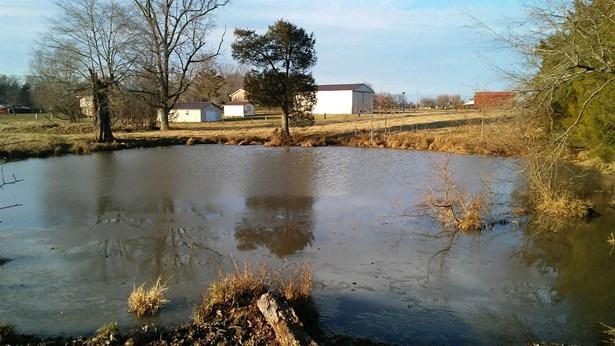 0 New Home Rd, Smithville, TN - USA (photo 4)
