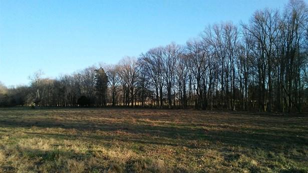 0 New Home Rd, Smithville, TN - USA (photo 5)