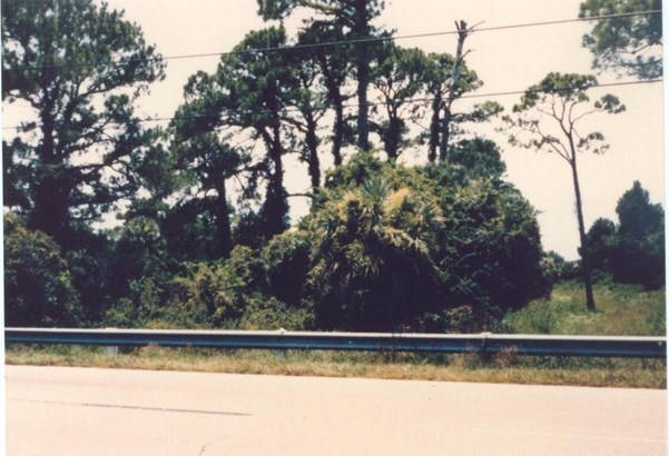 0 Hwy 1, Oak Hill, FL - USA (photo 1)