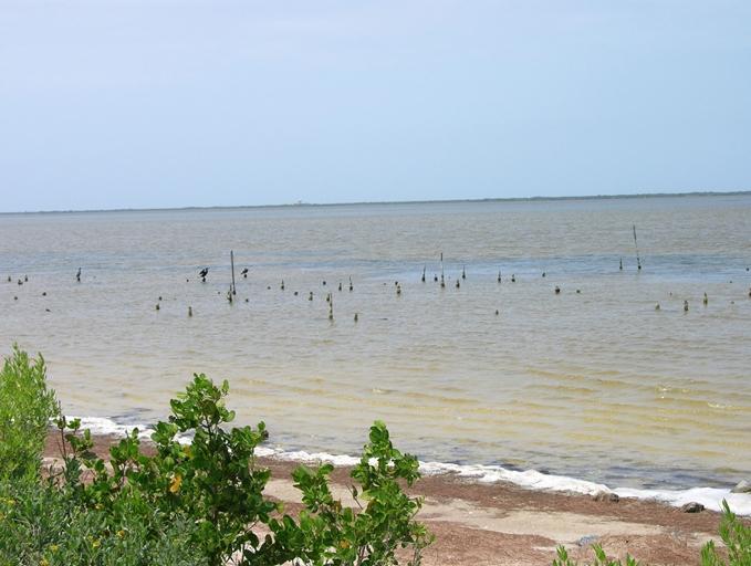 161 Jones Fish Camp Road, Edgewater, FL - USA (photo 5)