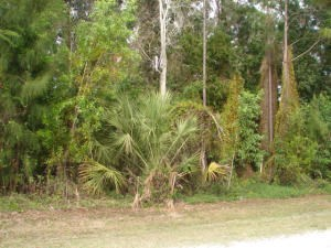 6010 Hickory Drive, Fort Pierce, FL - USA (photo 1)