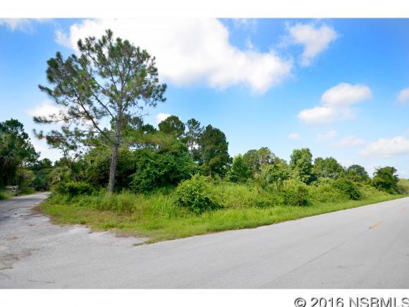 810 West Ariel Rd, Edgewater, FL - USA (photo 2)