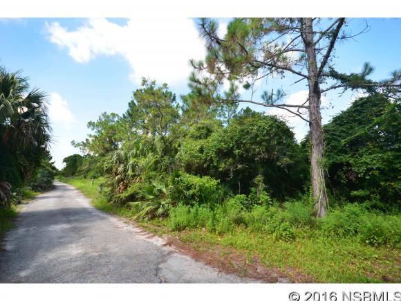 810 West Ariel Rd, Edgewater, FL - USA (photo 3)