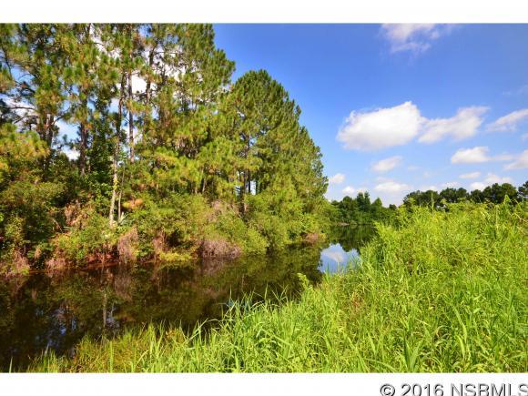 810 West Ariel Rd, Edgewater, FL - USA (photo 5)