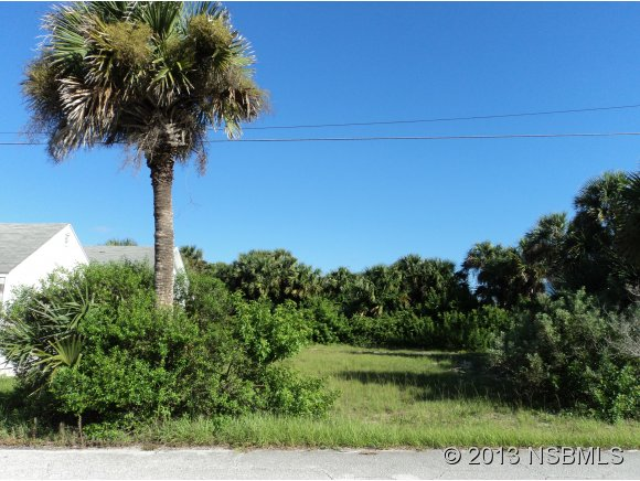 Land - New Smyrna Beach, FL (photo 2)