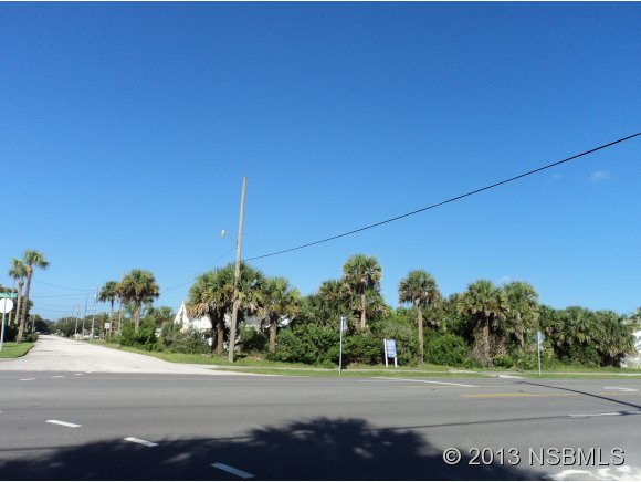 Land - New Smyrna Beach, FL (photo 4)