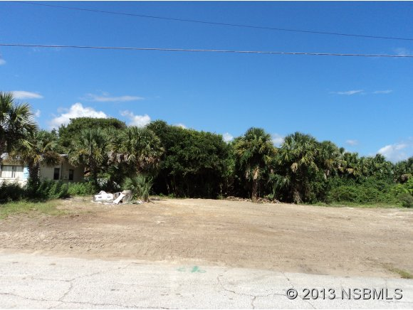 Land - New Smyrna Beach, FL (photo 5)