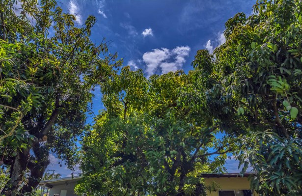 4100 Sw 101st Avenue, Miami, FL - USA (photo 4)