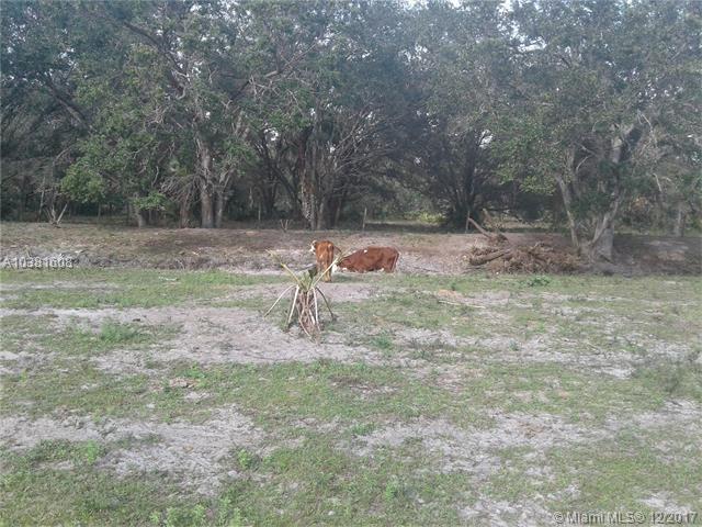 701 Aldon Farming Rd, Clewiston, FL - USA (photo 2)