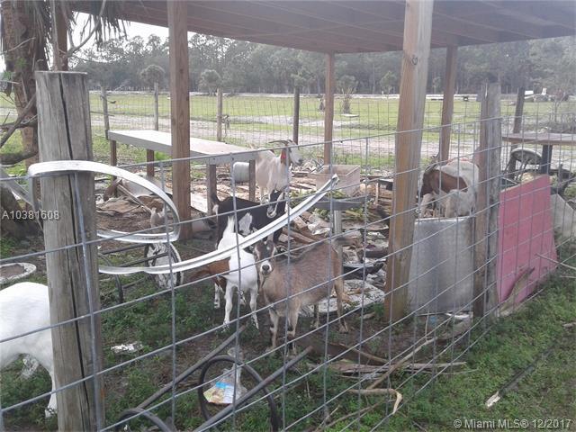 701 Aldon Farming Rd, Clewiston, FL - USA (photo 5)