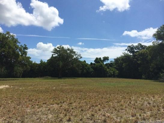 0  Parktowne Blvd , Edgewater, FL - USA (photo 2)
