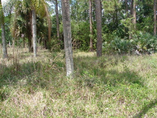 675 Appaloosa Avenue, Clewiston, FL - USA (photo 1)