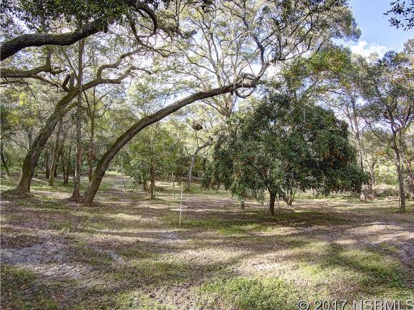 Land - DeLand, FL (photo 3)