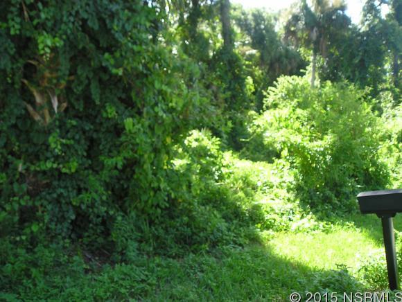 Land - Edgewater, FL (photo 2)