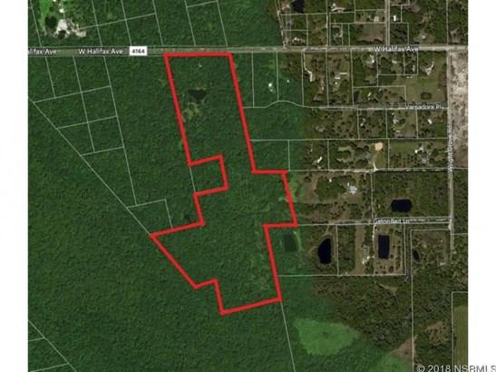 643  Maytown Rd , Oak Hill, FL - USA (photo 2)