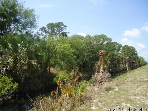 Land - Edgewater, FL (photo 1)
