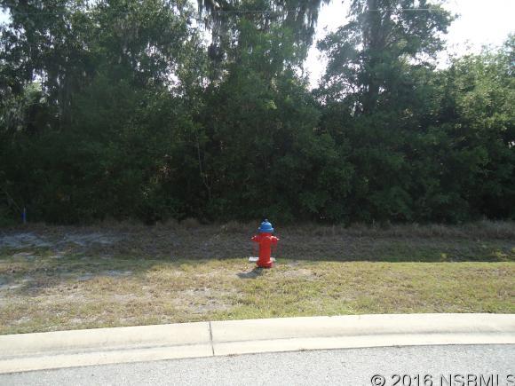 Land - Edgewater, FL (photo 4)