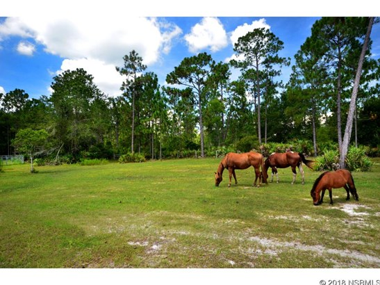 135  Buckhorn Road , New Smyrna Beach, FL - USA (photo 3)
