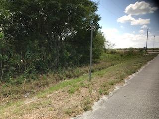 Land - Okeechobee, FL (photo 5)