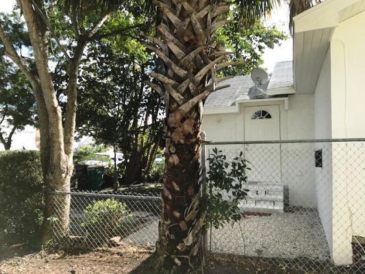 315 N K Street, Lake Worth, FL - USA (photo 4)
