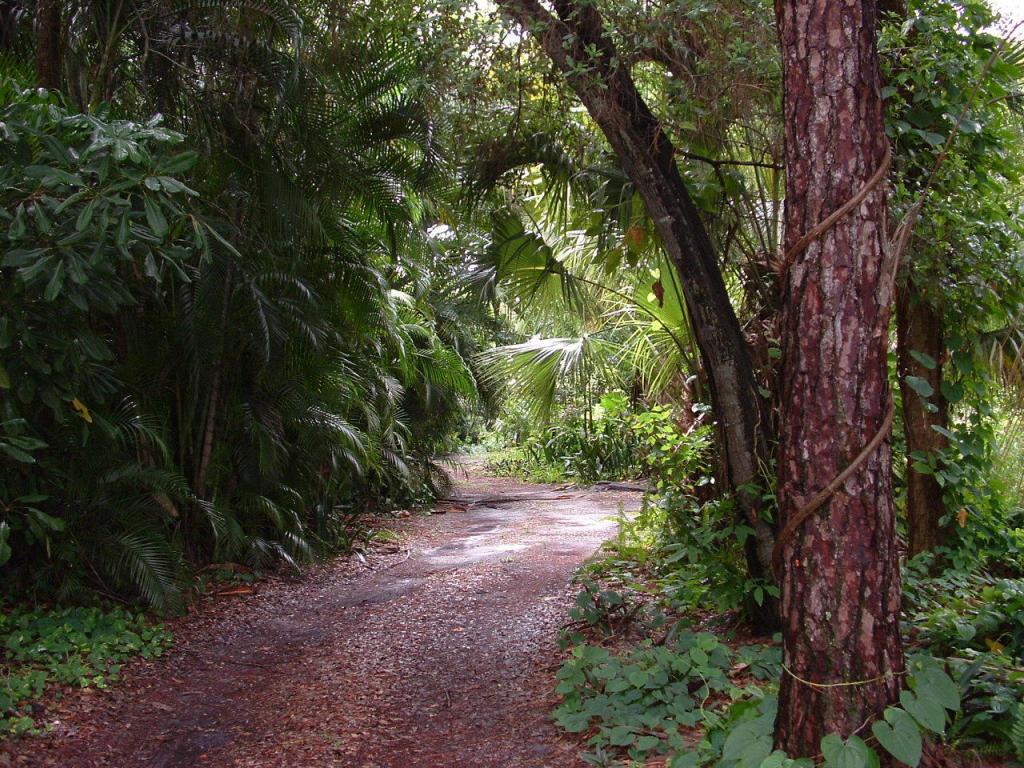 Land - West Palm Beach, FL (photo 3)