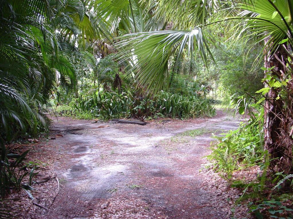 Land - West Palm Beach, FL (photo 4)
