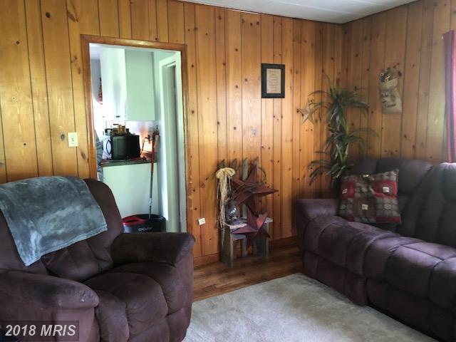 145 Macks Cabins, Franklin, WV - USA (photo 3)