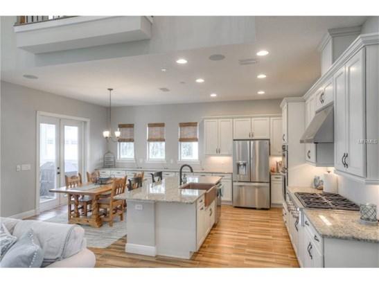 Single Family Home, Craftsman,Custom - LITHIA, FL (photo 5)