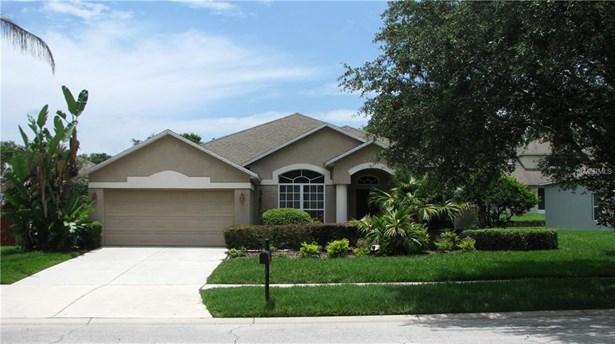 Single Family Residence - SEFFNER, FL (photo 1)