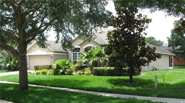 Single Family Residence - SEFFNER, FL (photo 4)