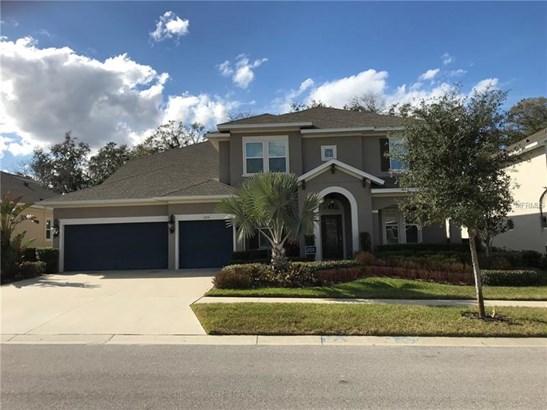 Single Family Home, Florida,Traditional - BRANDON, FL (photo 1)
