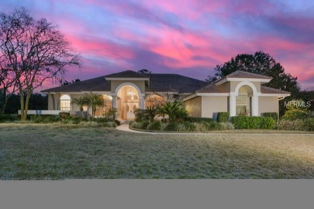 Single Family Residence, Traditional - WESLEY CHAPEL, FL (photo 1)