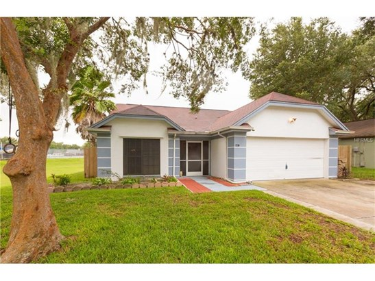 Single Family Home, Other - LUTZ, FL (photo 1)