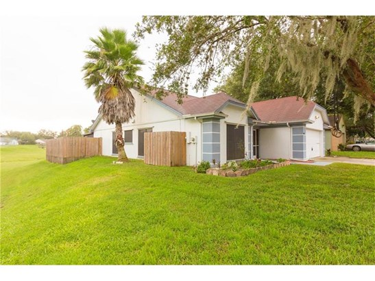 Single Family Home, Other - LUTZ, FL (photo 2)