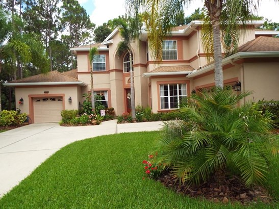 Single Family Residence - BRANDON, FL
